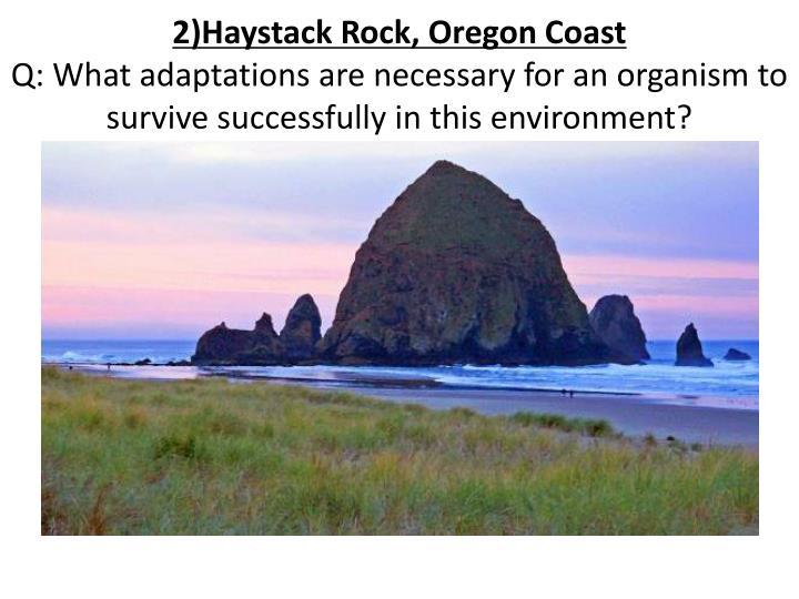 2)Haystack Rock, Oregon Coast