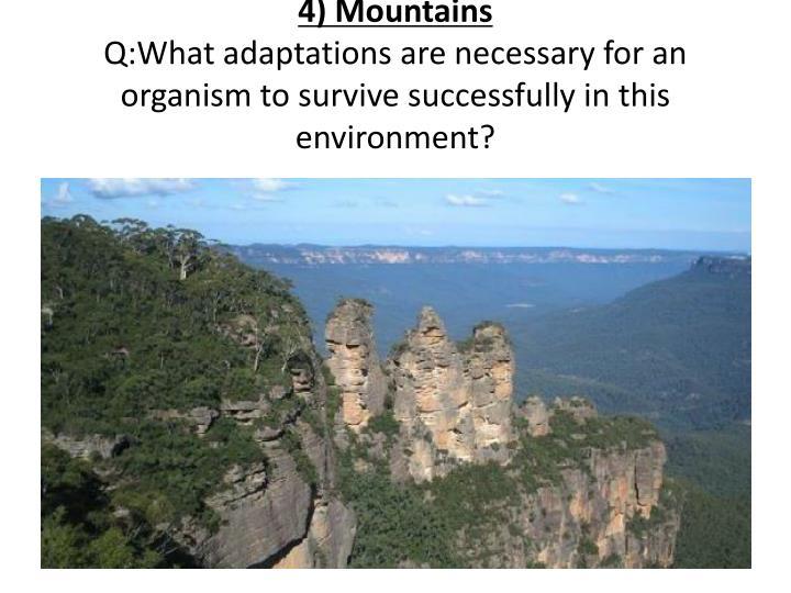 4) Mountains