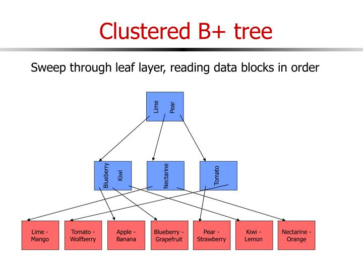Clustered B+ tree