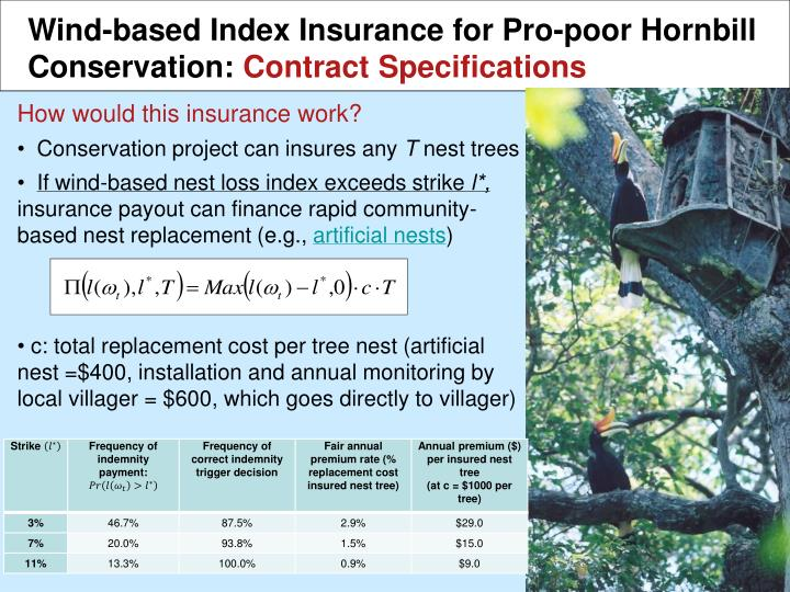 Wind-based Index Insurance for Pro-poor Hornbill Conservation: