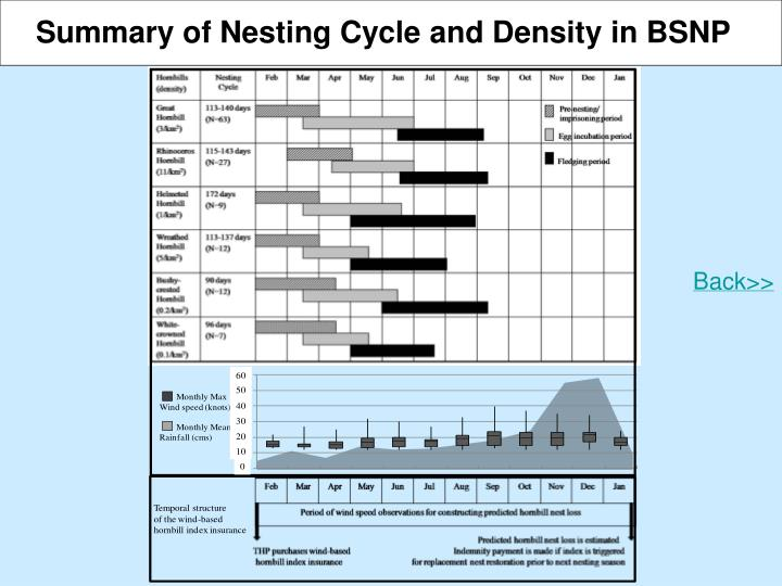 Summary of Nesting Cycle and Density in BSNP
