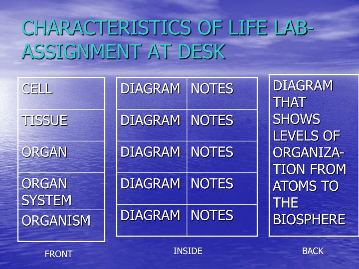 CHARACTERISTICS OF LIFE LAB-ASSIGNMENT AT DESK