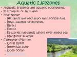 aquatic lifezones