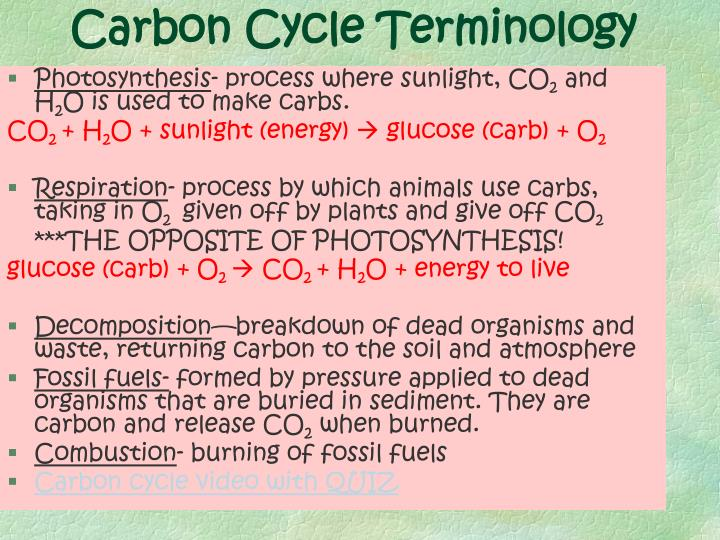Carbon Cycle Terminology