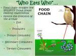 who eats who