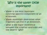 why is the water cycle important