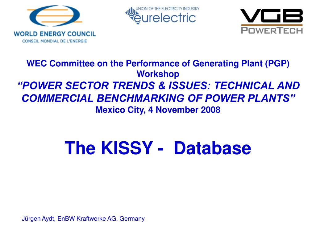 WEC Committee on the Performance of Generating Plant (PGP)