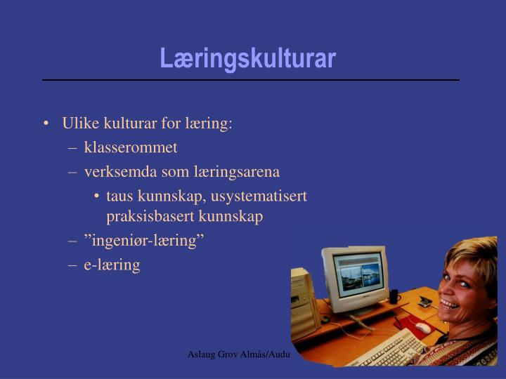 Ulike kulturar for læring: