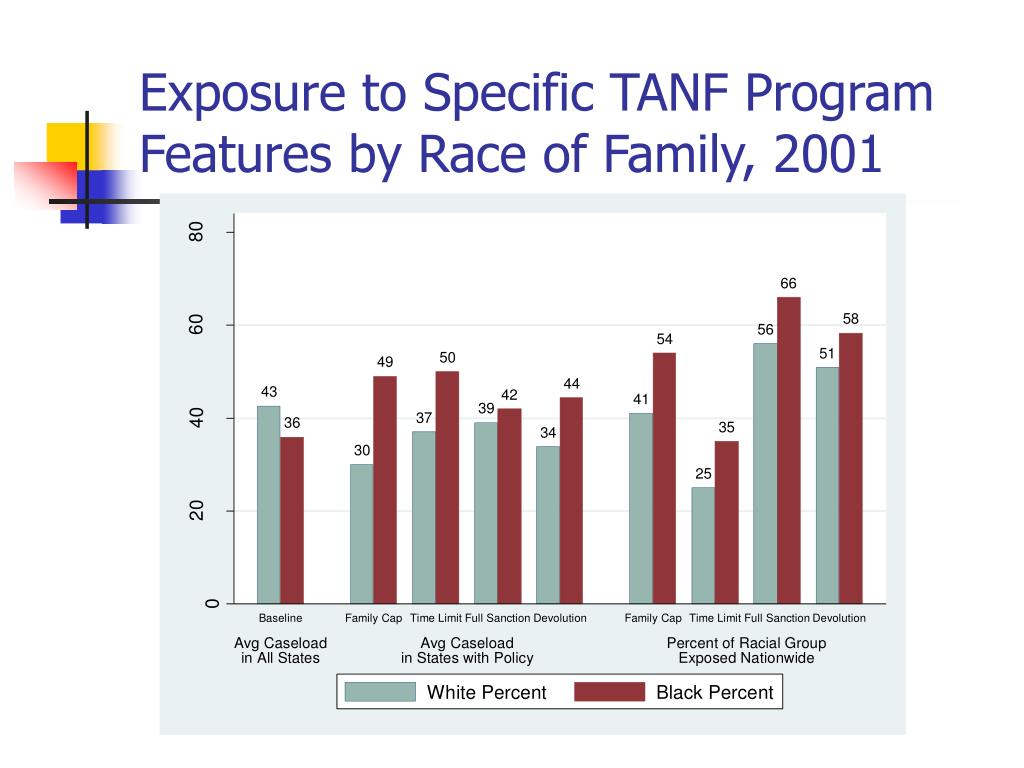 Exposure to Specific TANF Program Features by Race of Family, 2001