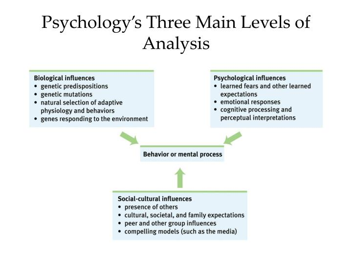 Psychology s three main levels of analysis