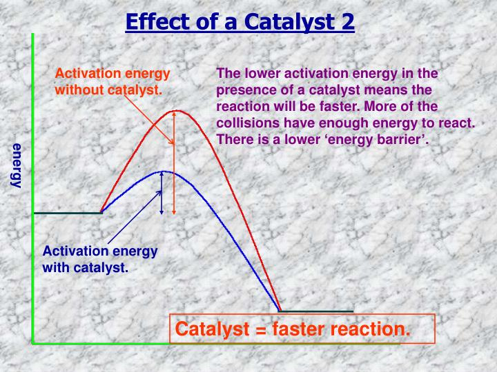 Effect of a Catalyst 2