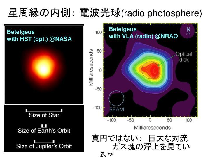 星周縁の内側: 電波光球
