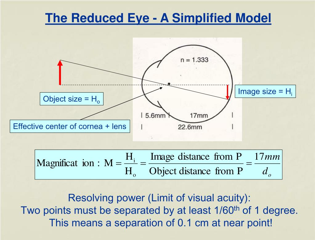 The Reduced Eye - A Simplified Model