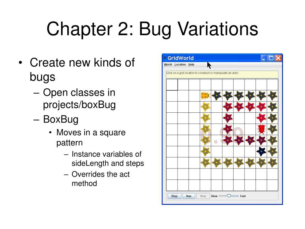 Chapter 2: Bug Variations