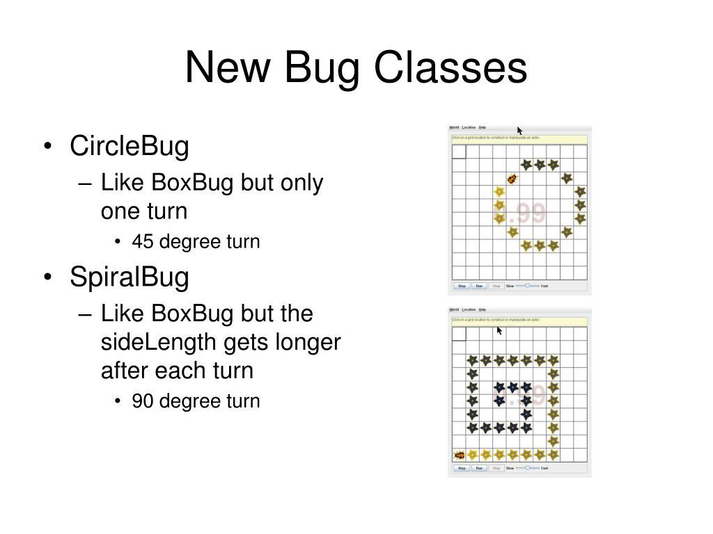New Bug Classes