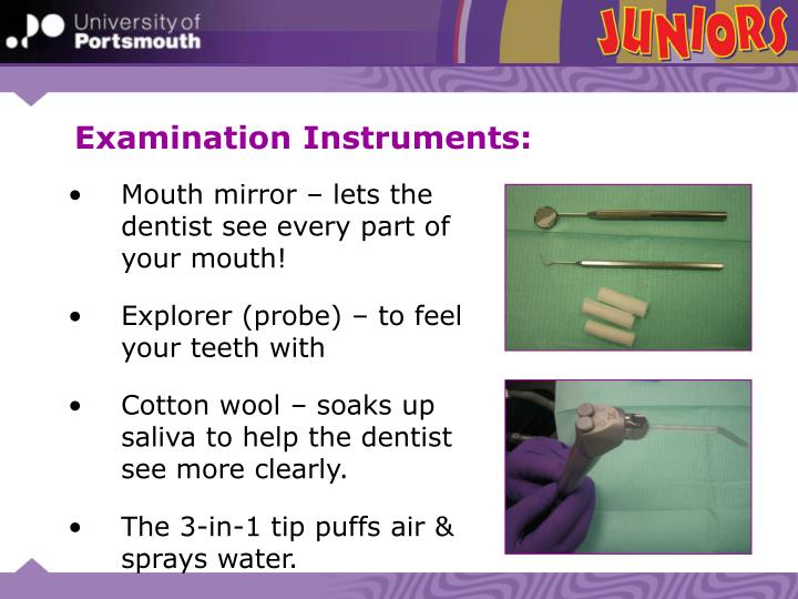 Examination Instruments: