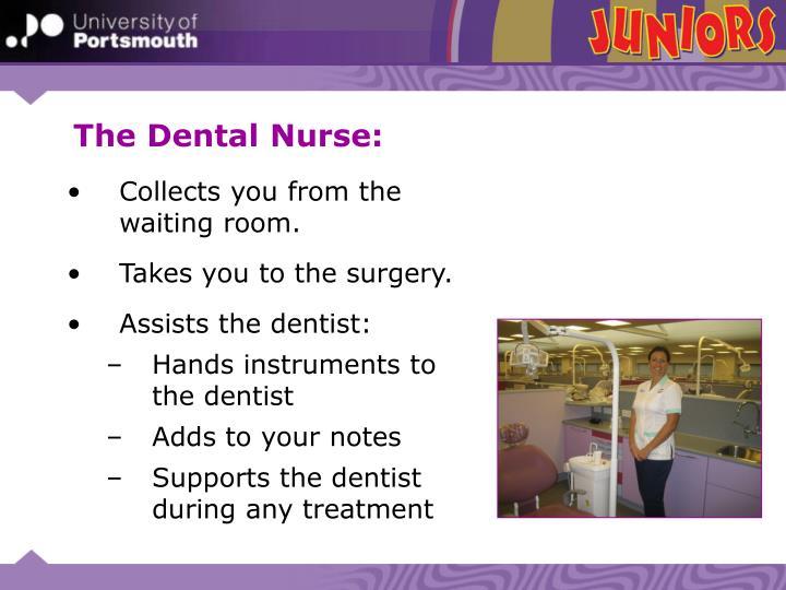 The Dental Nurse: