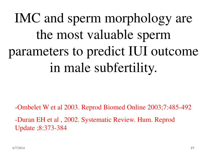 IMC and sperm morphology are the most valuable sperm parameters to predict IUI outcome in male subfertility.