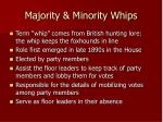 majority minority whips