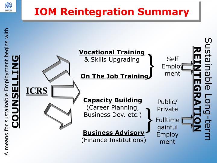 IOM Reintegration Summary