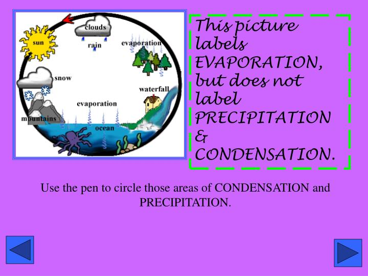 This picture labels EVAPORATION, but does not label PRECIPITATION & CONDENSATION.