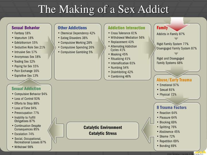 The Making of a Sex Addict