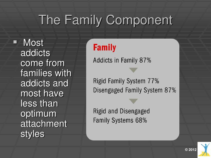 The Family Component
