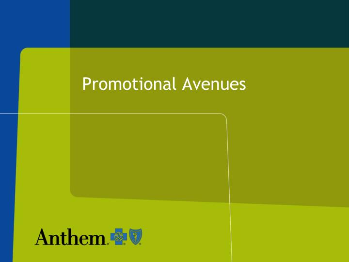 Promotional Avenues