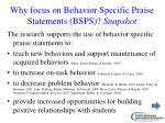 why focus on behavior specific praise statements bsps snapshot