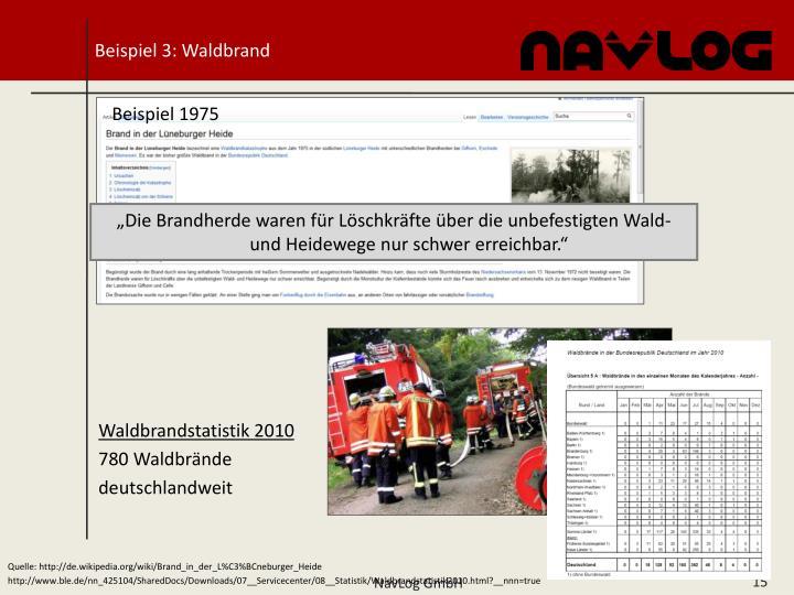 Beispiel 3: Waldbrand