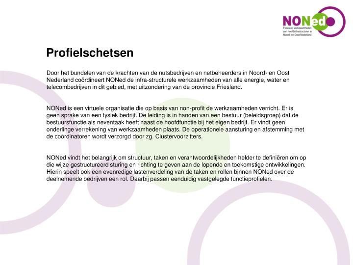 Door het bundelen van de krachten van de nutsbedrijven en netbeheerders in Noord- en Oost Nederland coördineert NONed de infra-structurele werkzaamheden van alle energie, water en telecombedrijven in dit gebied, met uitzondering van de provincie Friesland.