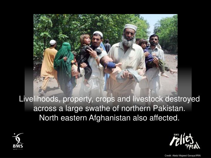 Livelihoods, property, crops and livestock destroyed across a large swathe of northern Pakistan.