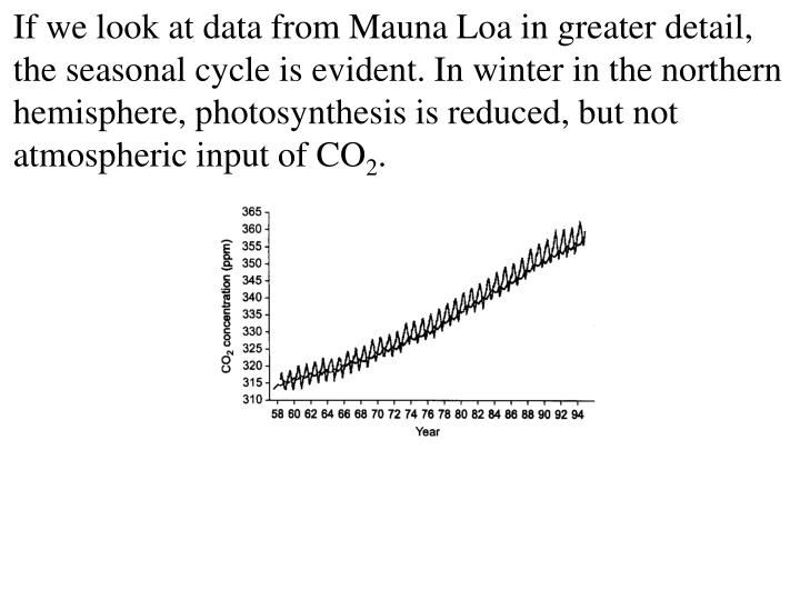 If we look at data from Mauna Loa in greater detail, the seasonal cycle is evident. In winter in the northern hemisphere, photosynthesis is reduced, but not atmospheric input of CO