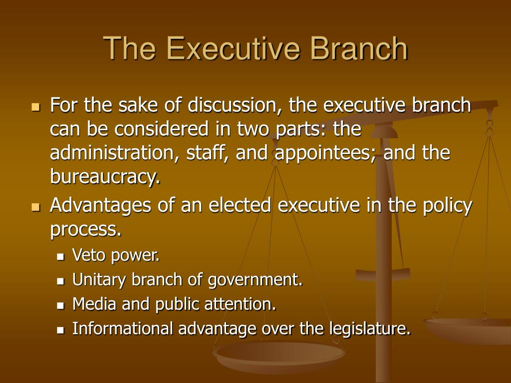 "a discussion on the medias focus on the executive branch of the american government The basics of american government edited by political socialization and the media provide questions for discussion and several feature a ""civic engagement."
