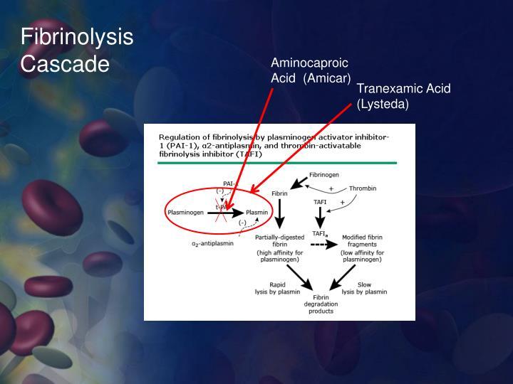 Fibrinolysis Cascade