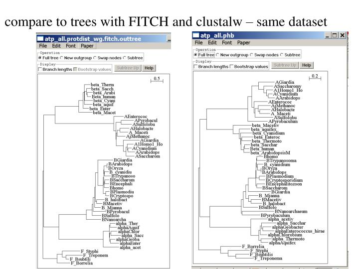 compare to trees with FITCH and clustalw – same dataset