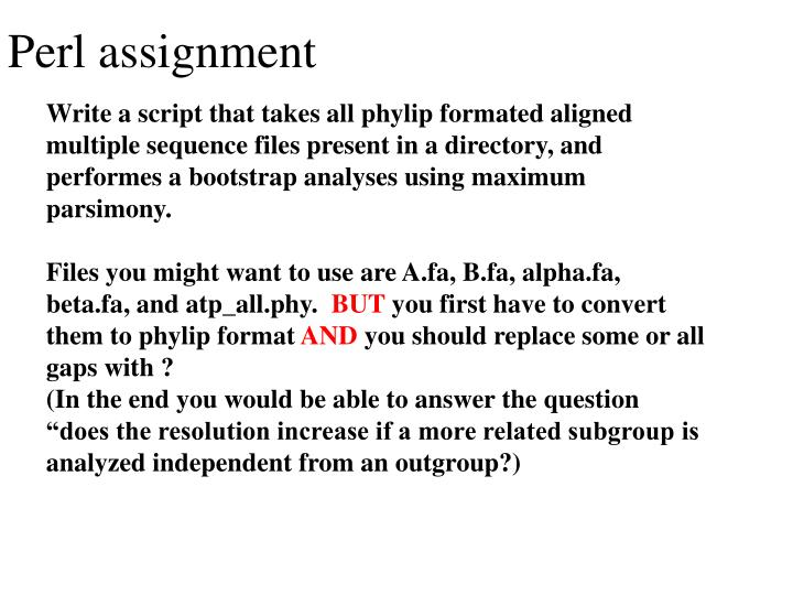 Perl assignment