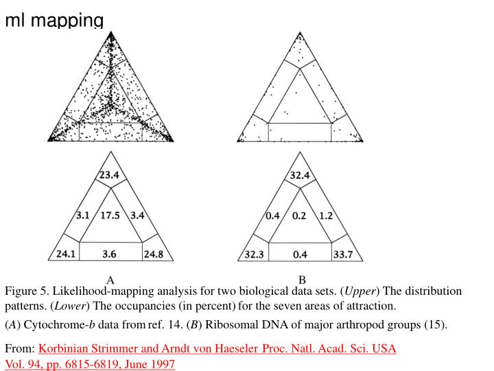 ml mapping