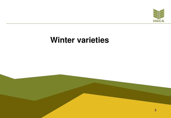 Winter varieties