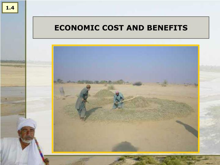 Economic cost and benefits