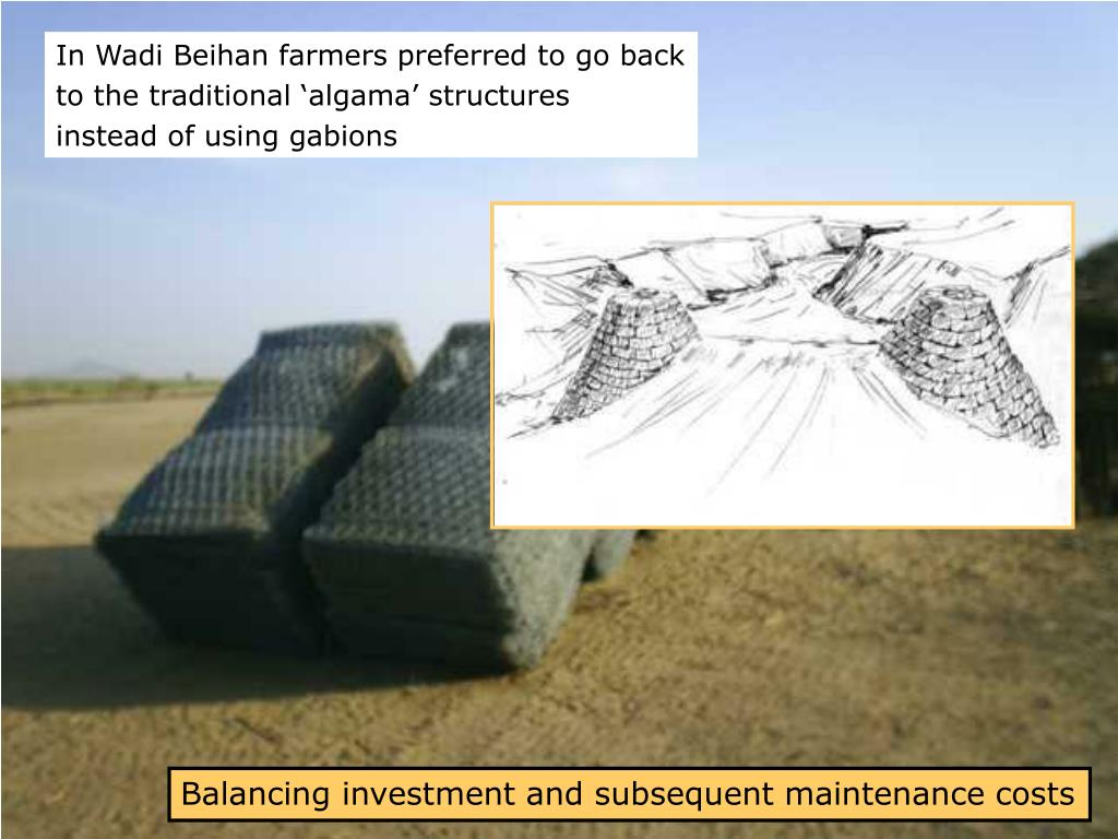 In Wadi Beihan farmers preferred to go back