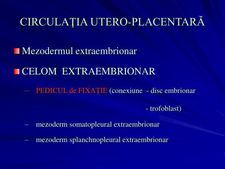 CIRCULAŢIA UTERO-PLACENTARĂ