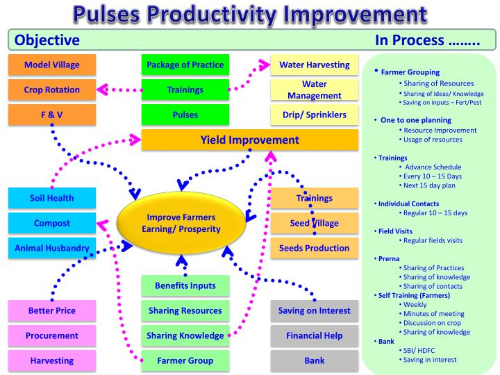 Pulses Productivity Improvement