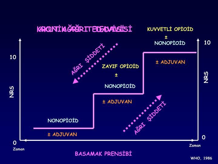KRONİK AĞRI  TEDAVİSİ