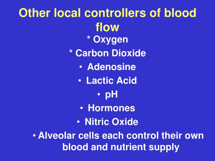 Other local controllers of blood flow