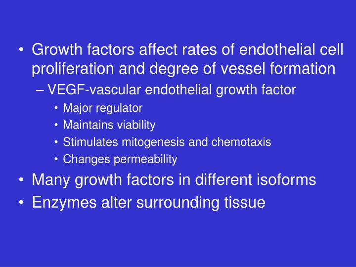 Growth factors affect rates of endothelial cell proliferation and degree of vessel formation