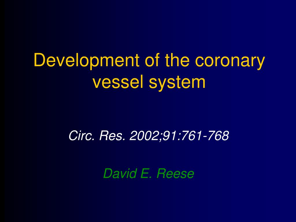 Development of the coronary vessel system