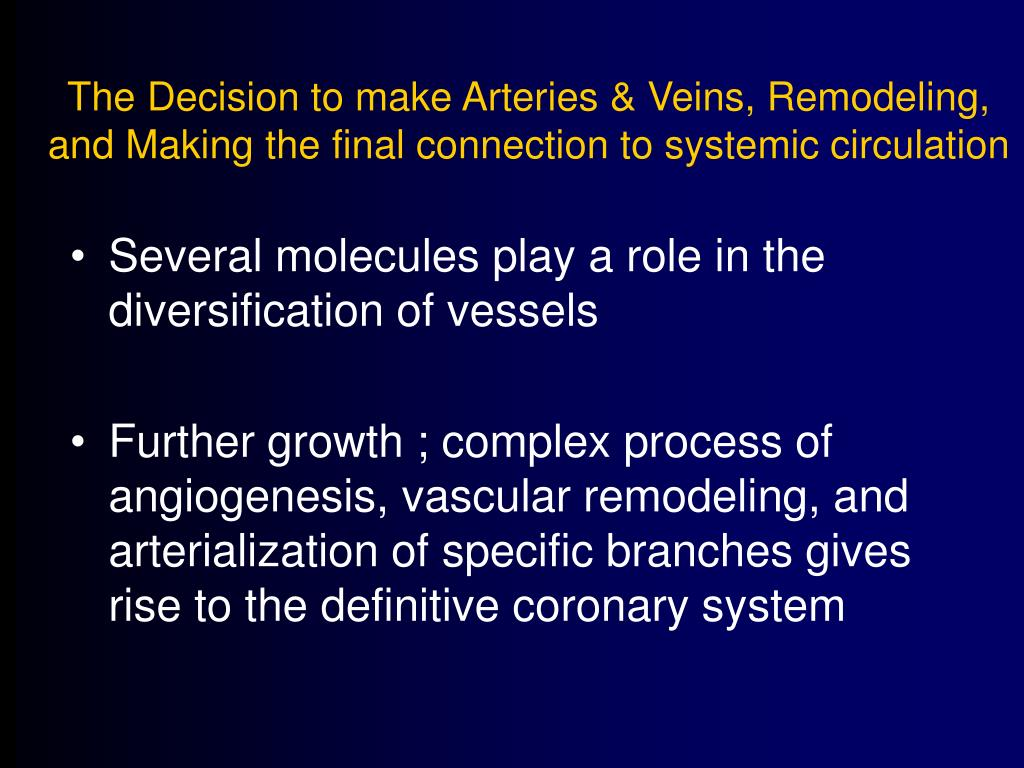 The Decision to make Arteries & Veins, Remodeling, and Making the final connection to systemic circulation