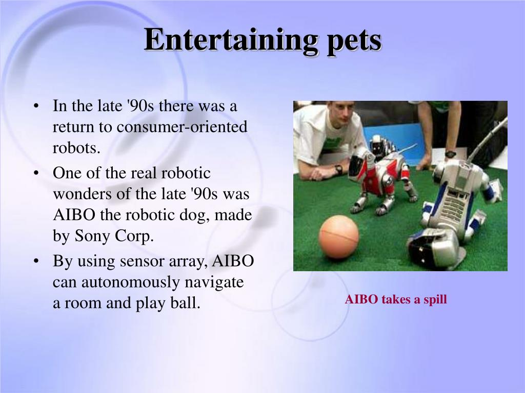 Entertaining pets