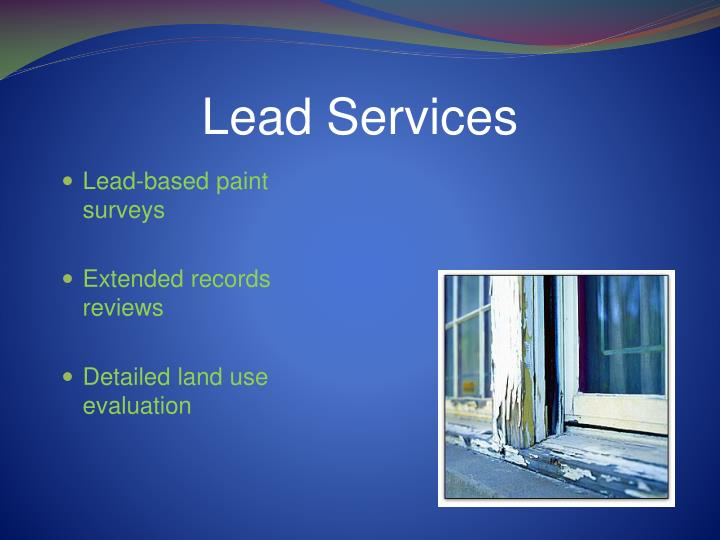 Lead Services